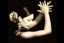 Flamenco Love / It's a dance, not a bird.
