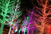 Christmas Lights Inspiration!