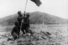 Kore Harekatı 1950
