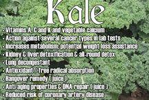 Herbs & Green's Health benefits