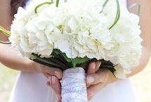 WEDDING / by Sara Lorton