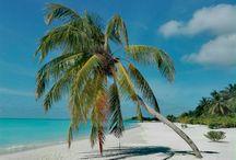 MY PHOTOS FROM MALDIVES