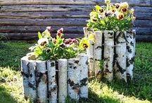 Садовые идеи
