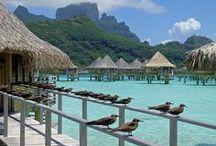Tropical Travel / by Diana Brandon