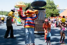 Theme Parks - Attractions