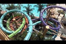 Aquatica Orlando Articles / Aquatica Water Park articles