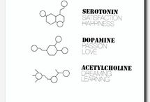 Meaningful chemistry