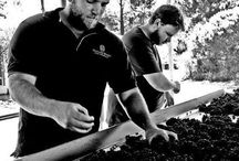 Villiera Winemakers