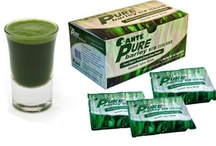 Organic Pure Barley Grass Green Powder / Sante Pure Barley New Zealand Blend with Stevia is pure organic green barley grass powder and blended with one of nature's most potent sweeteners Stevia.  Read more: http://www.usfreeads.com/2873726-cls.html