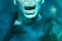 Lord Voldemort!