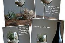 Succulent plantings/Terrariums