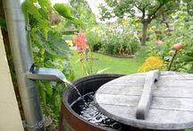 Water Wise | Water Capture, Rainscapes, Drought Tolerant, Nativescapes