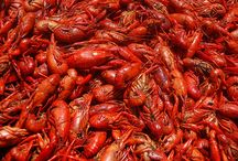Louisiana :) / by Gretchen Frith