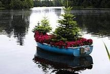 Glorious Gardens / by Michelle MRTN