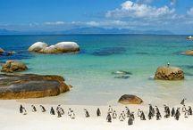 Путешествия по ЮАР