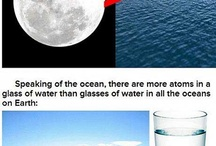 Mind Blowing Facts