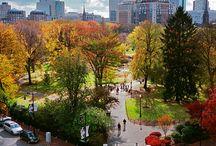 Everything Boston / by Jamie Buchanan