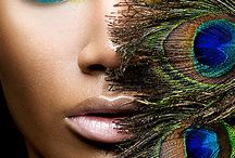 Peacock Feathers / by Cindy Wake