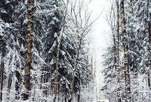 winter;