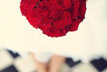 Aurora & Hugh / September 2014 - Bright reds, pretty, informal flowers.  Yorkshire lavender