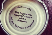 Facts-Snapple, Tumblr, & Other Miscellaneous Facts