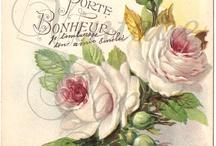 Цветы на открытках