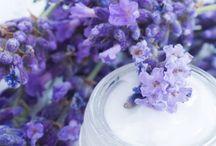 Herbalism and Natural Remedies