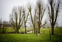 Surroundings / Around Verilin, Heule, Belgium