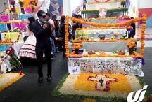 Concurso de Altares Universidad Interamericana Puebla / Concurso de Altares @LaInterMx <3 ¡Felicidades a los ganadores! Universidad Interamericana Puebla