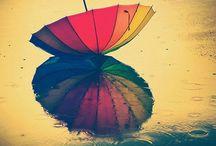 Зонтичное одиночество