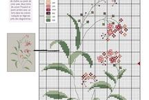 Korsstygn - Herbarium