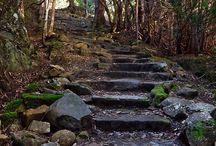 Mount Wellington today
