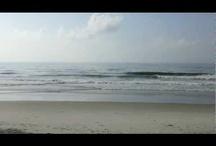 Videos from Litchfield/Pawleys Island