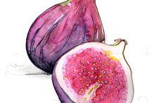 owoce i warzywa akwarela