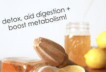 Immunonutrition: Digestion