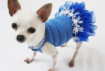 Crochet for doggies / by Simply Done Crochet