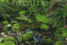 Breath;