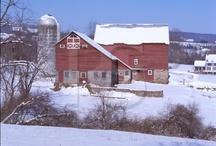 BARNS / FARMS / BRIDGES / by Susie Fellner