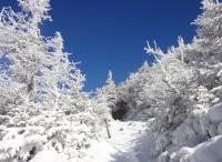 New Hampshire Hikes
