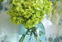 Mason Jars and Flowers