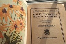Wild flowers and life, books (and all i love)