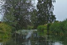 Tollense / Die Tollense ist ein etwa 63 km langer, einsamer Kleinfluss zwischen dem Tollensesee bei Neubrandenburg und Demmin. Sie durchfließt ein breites Tal, das teilweise natürlich geblieben ist.