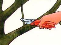 Apfelbaumbeschnitt
