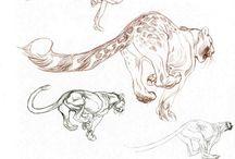 kresby zvířat