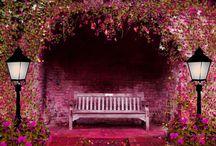Garden Bench (Bahçe bankları)