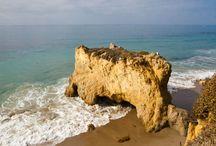 California / by Elizabeth