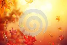 Autumn backgrounds / #autumn, #abstract, #background
