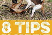 MPL Tips