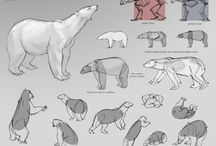 Animal Drawing Reference