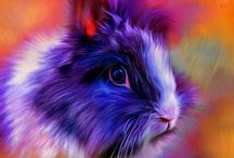 Animals colorfully